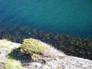 Her nede var det fint å dykke :)