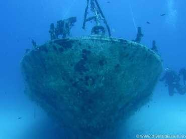 Baugen, vraktåke, dykkere