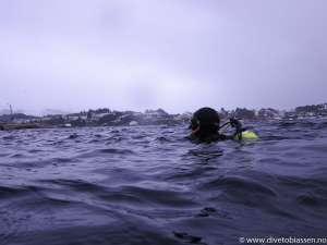 Dykker i overflaten, snø